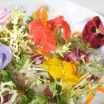 Храна от цветя
