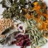 Лечебни билки и как те ни помагат