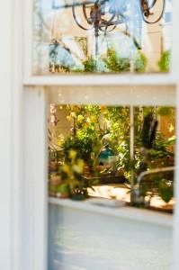 зелен акцент в дома